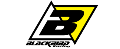 BlackBird Dream